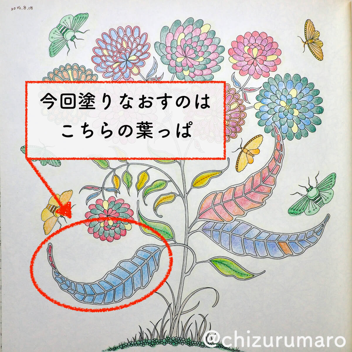 f:id:chizurumaro:20200616102611j:plain