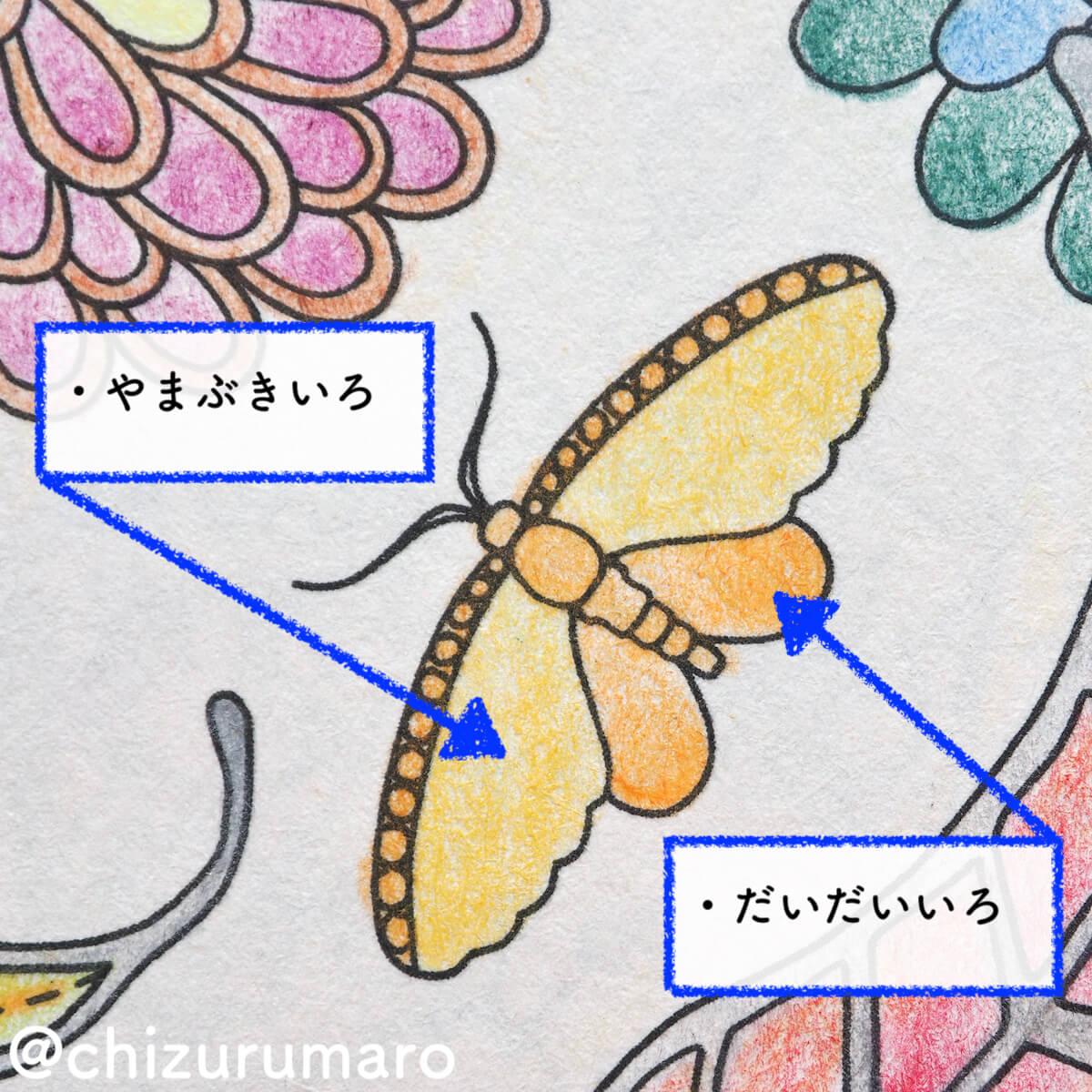f:id:chizurumaro:20200717220516j:plain