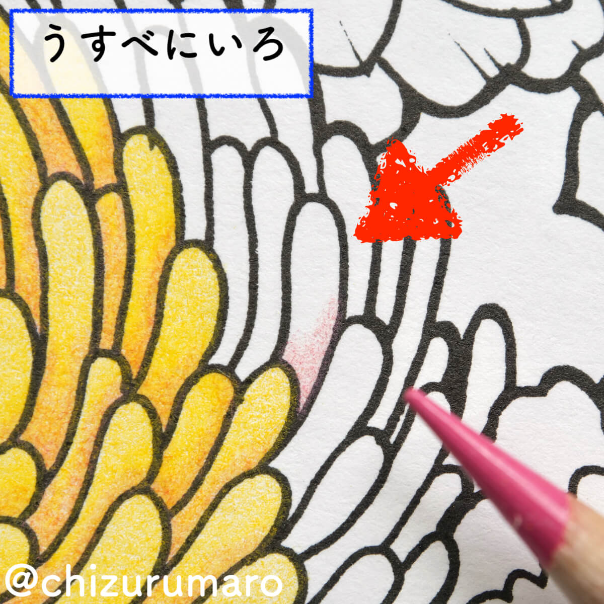 f:id:chizurumaro:20200930151646j:plain