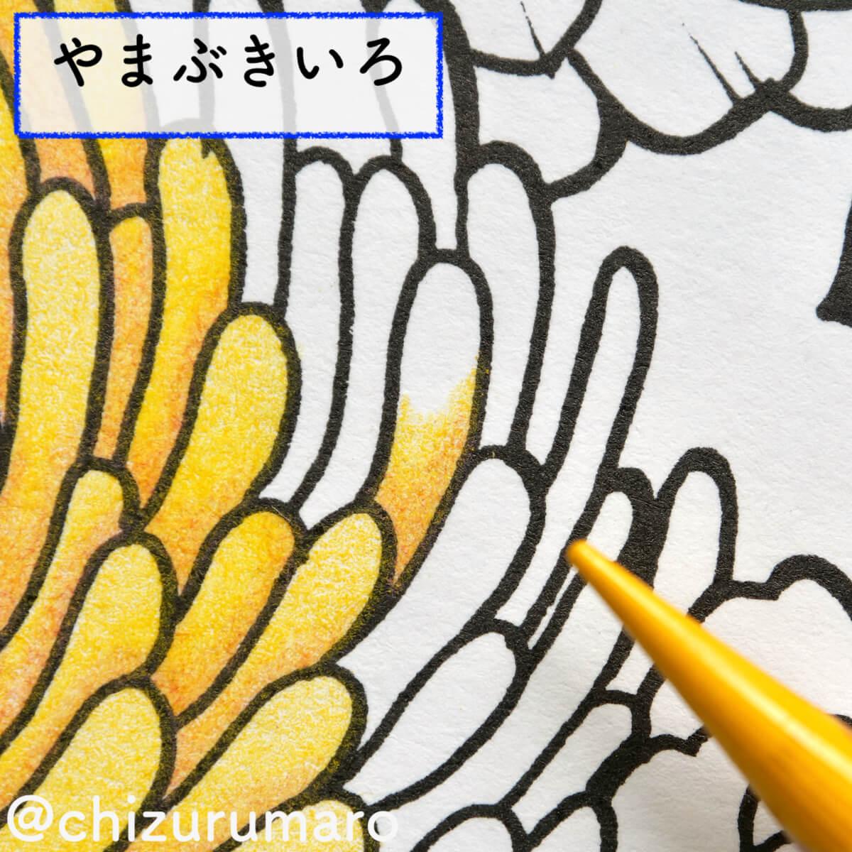 f:id:chizurumaro:20200930151659j:plain