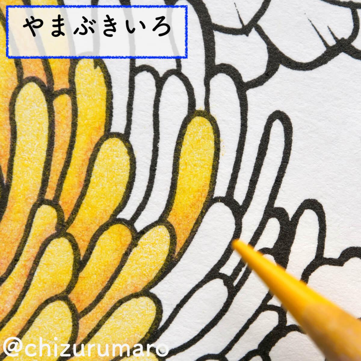f:id:chizurumaro:20200930151720j:plain