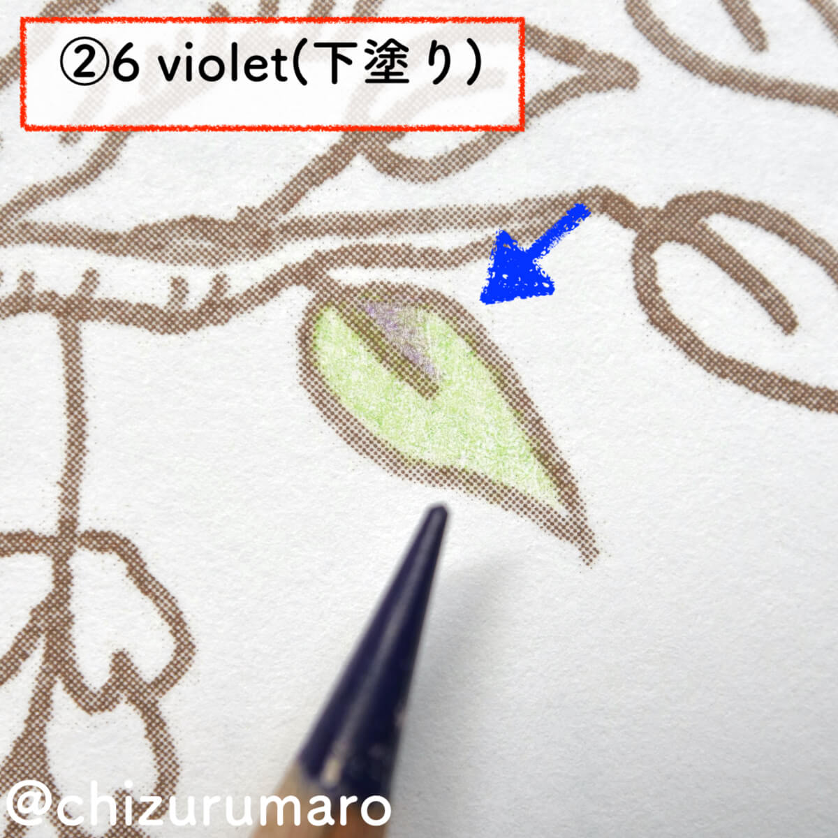 f:id:chizurumaro:20201105212406j:plain
