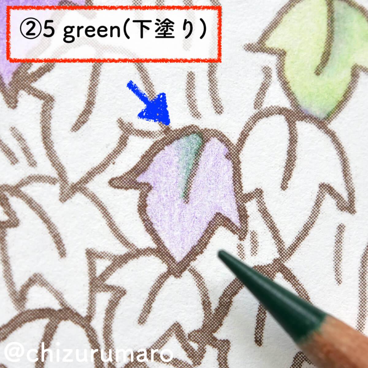 f:id:chizurumaro:20201119164805j:plain