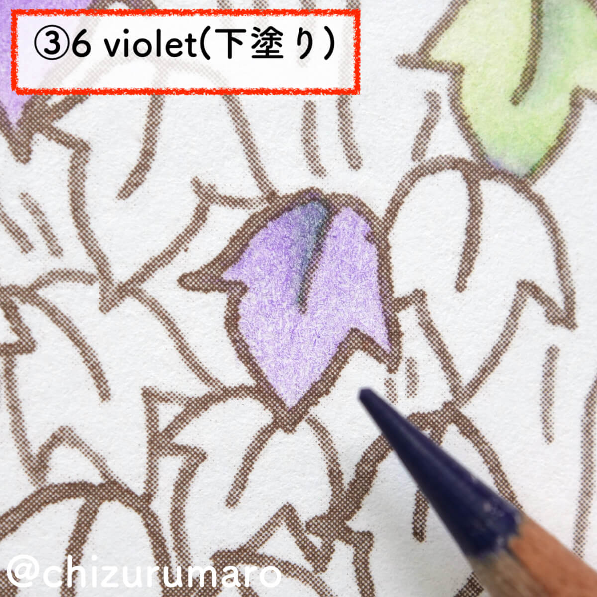 f:id:chizurumaro:20201119164835j:plain