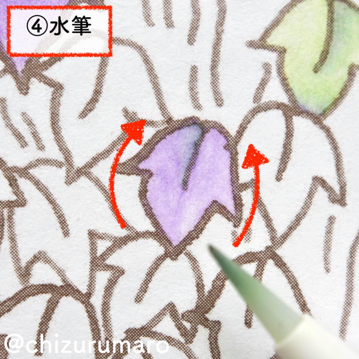 f:id:chizurumaro:20201119165121j:plain