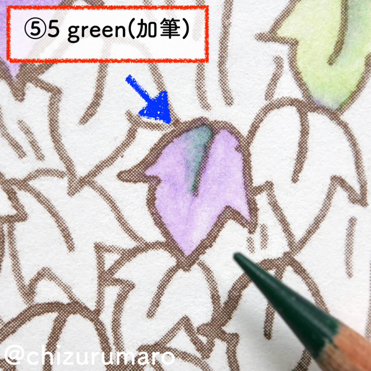 f:id:chizurumaro:20201119165254j:plain