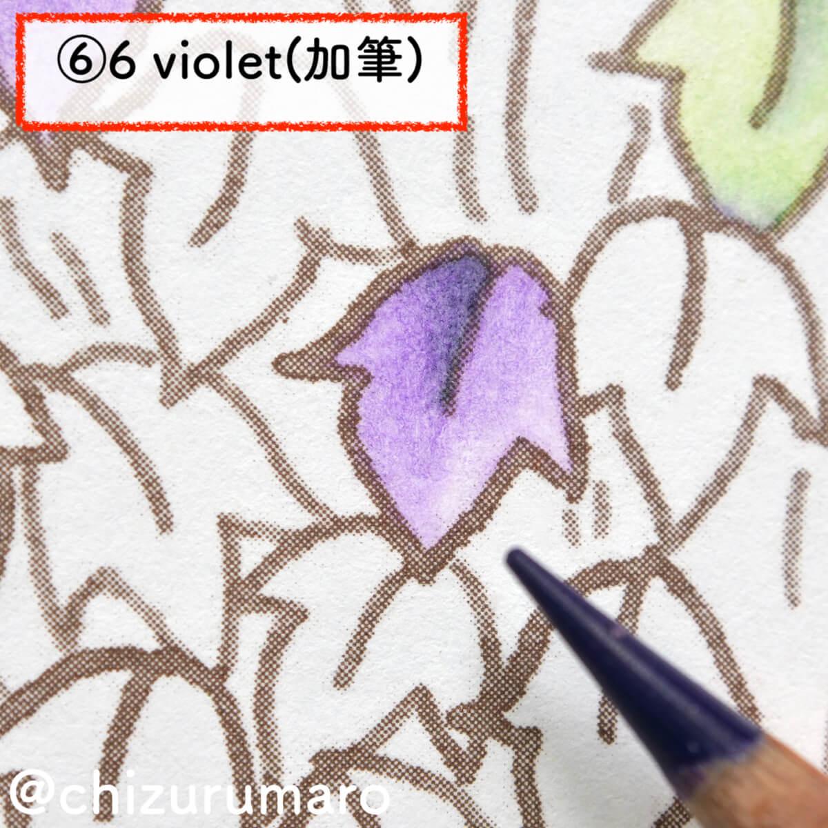 f:id:chizurumaro:20201119165345j:plain