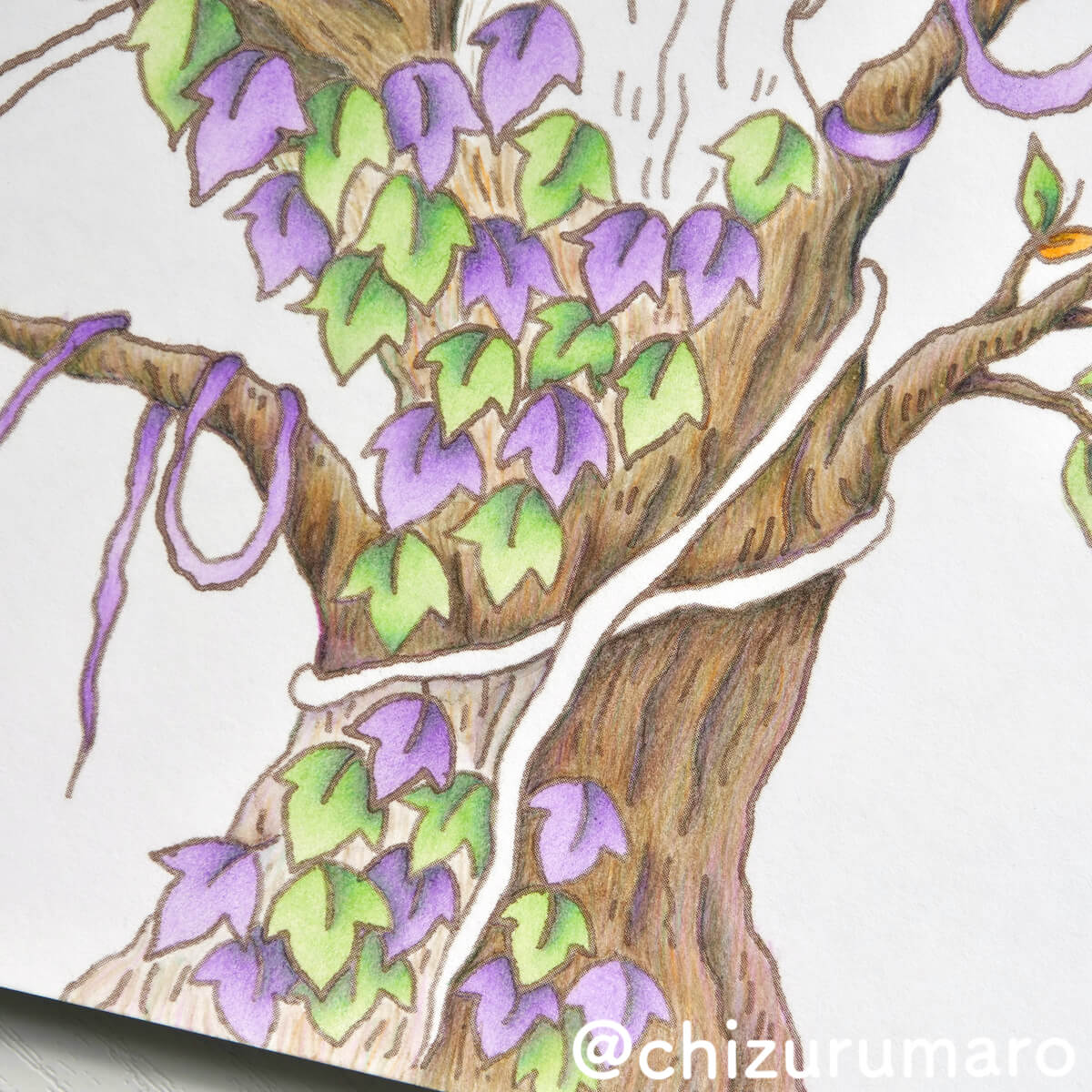 f:id:chizurumaro:20201203211610j:plain