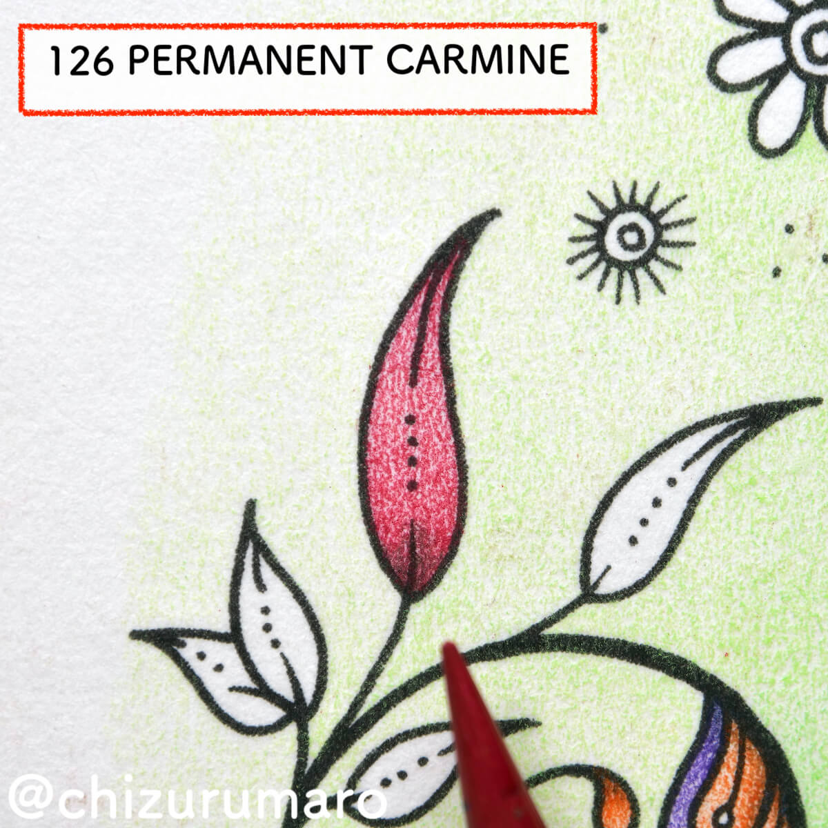 f:id:chizurumaro:20210225121731j:plain