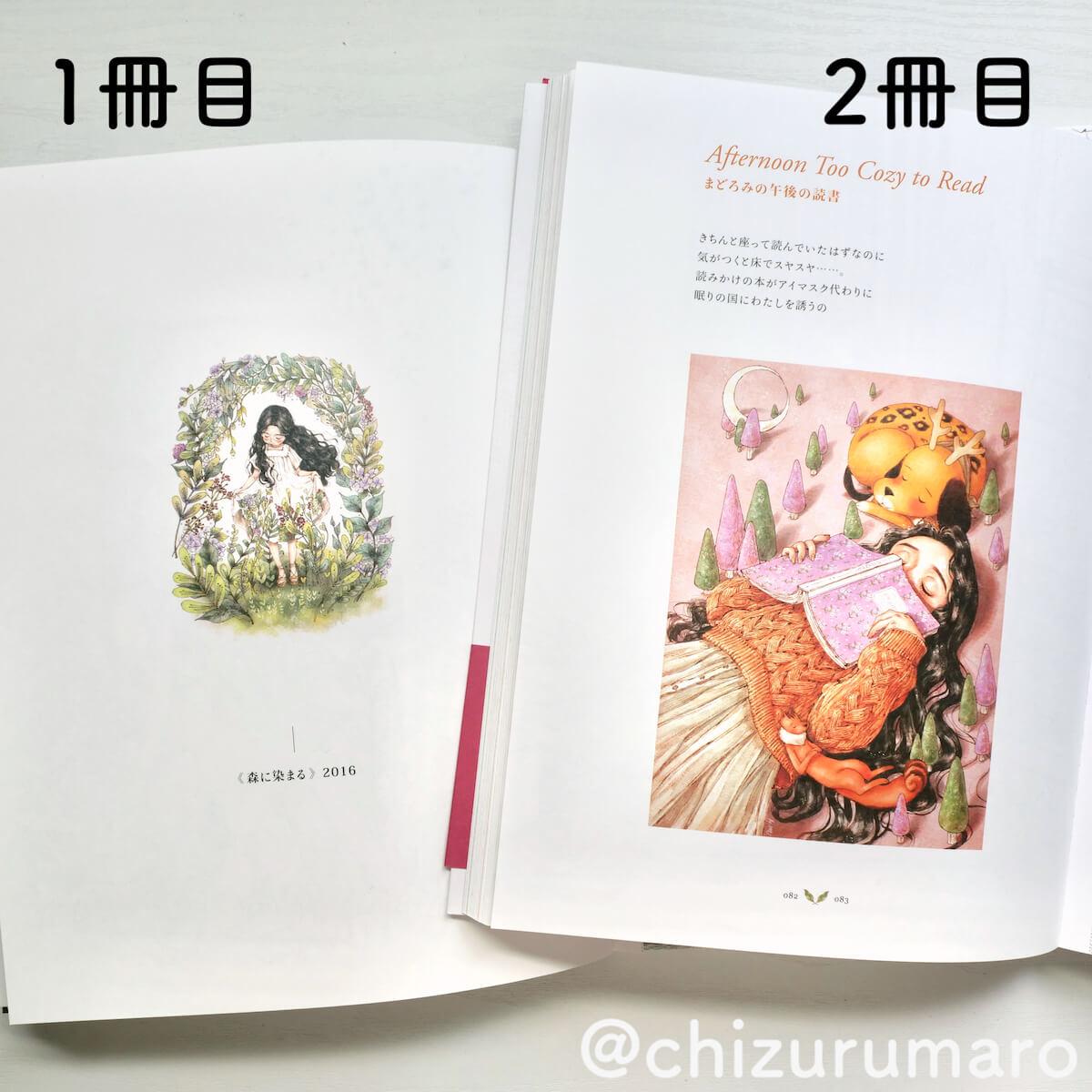 f:id:chizurumaro:20210510160954j:plain