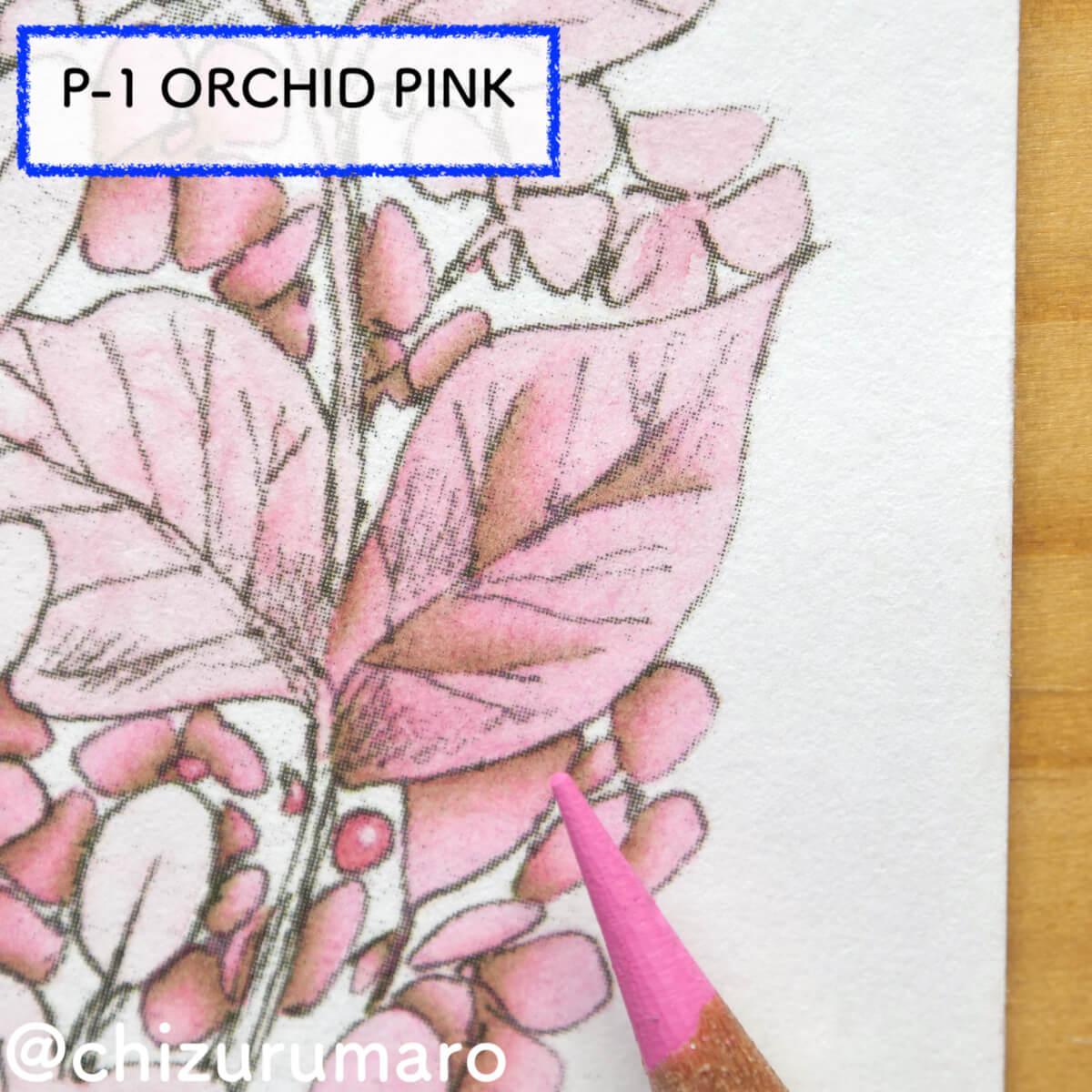 f:id:chizurumaro:20210612163830j:plain
