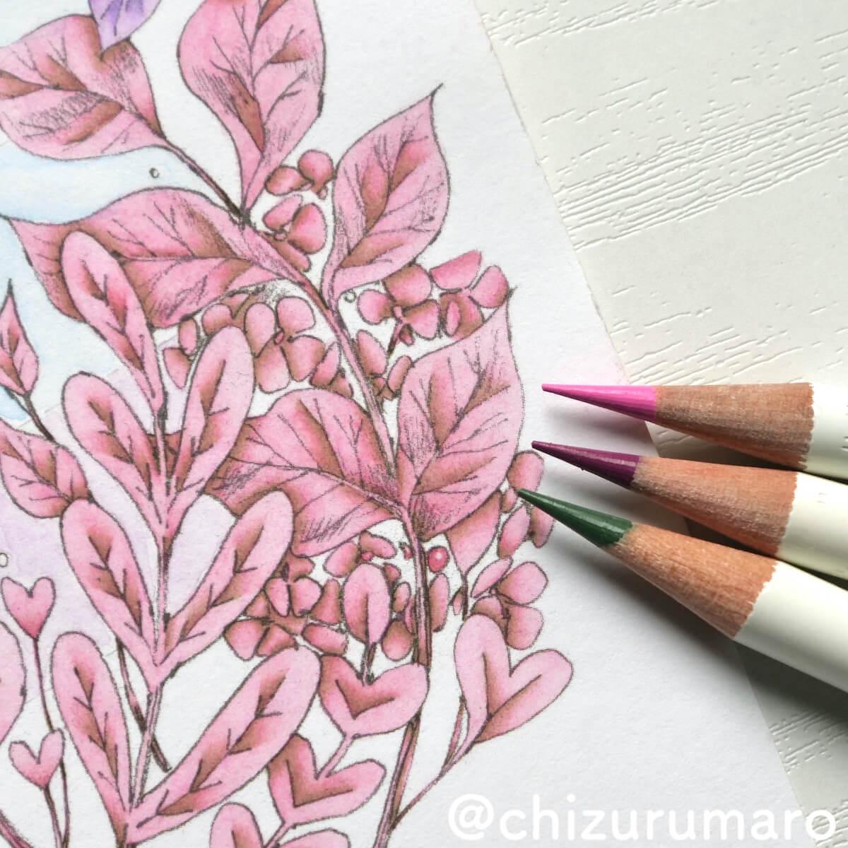 f:id:chizurumaro:20210612173026j:plain