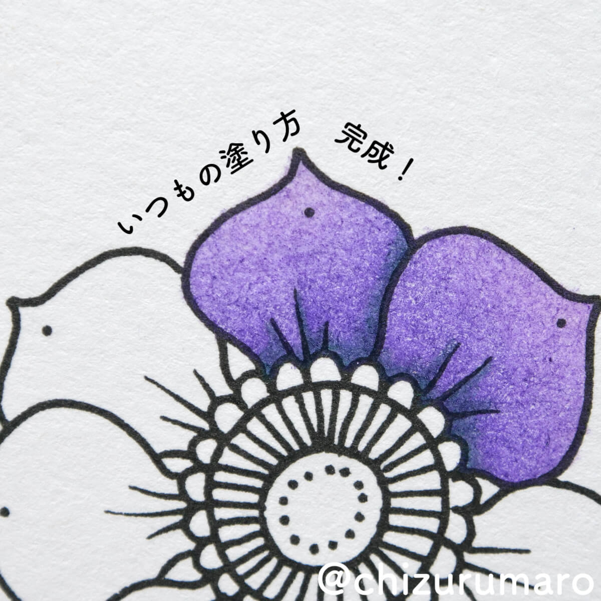 f:id:chizurumaro:20210805152837j:plain