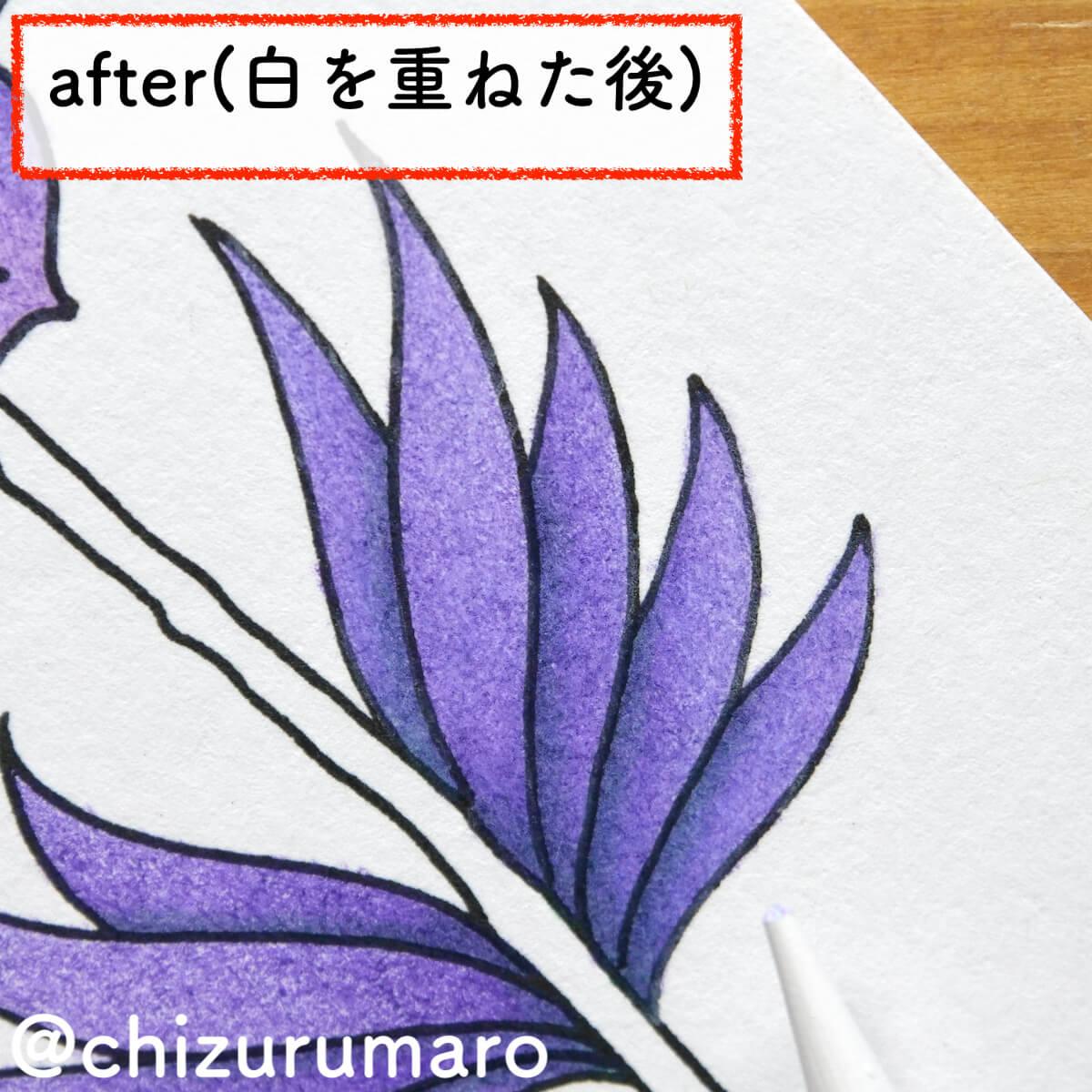 f:id:chizurumaro:20210805155114j:plain
