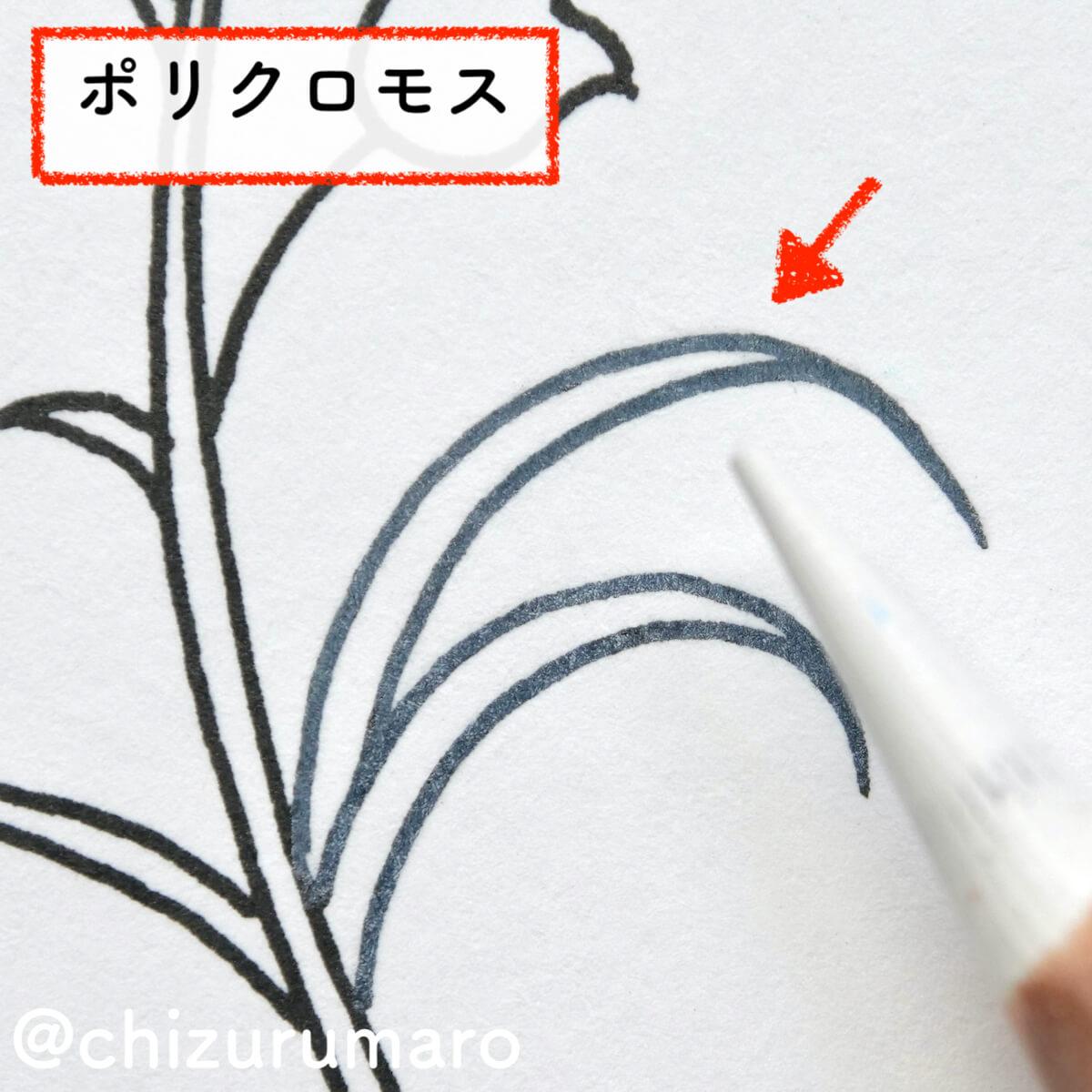 f:id:chizurumaro:20210819120245j:plain