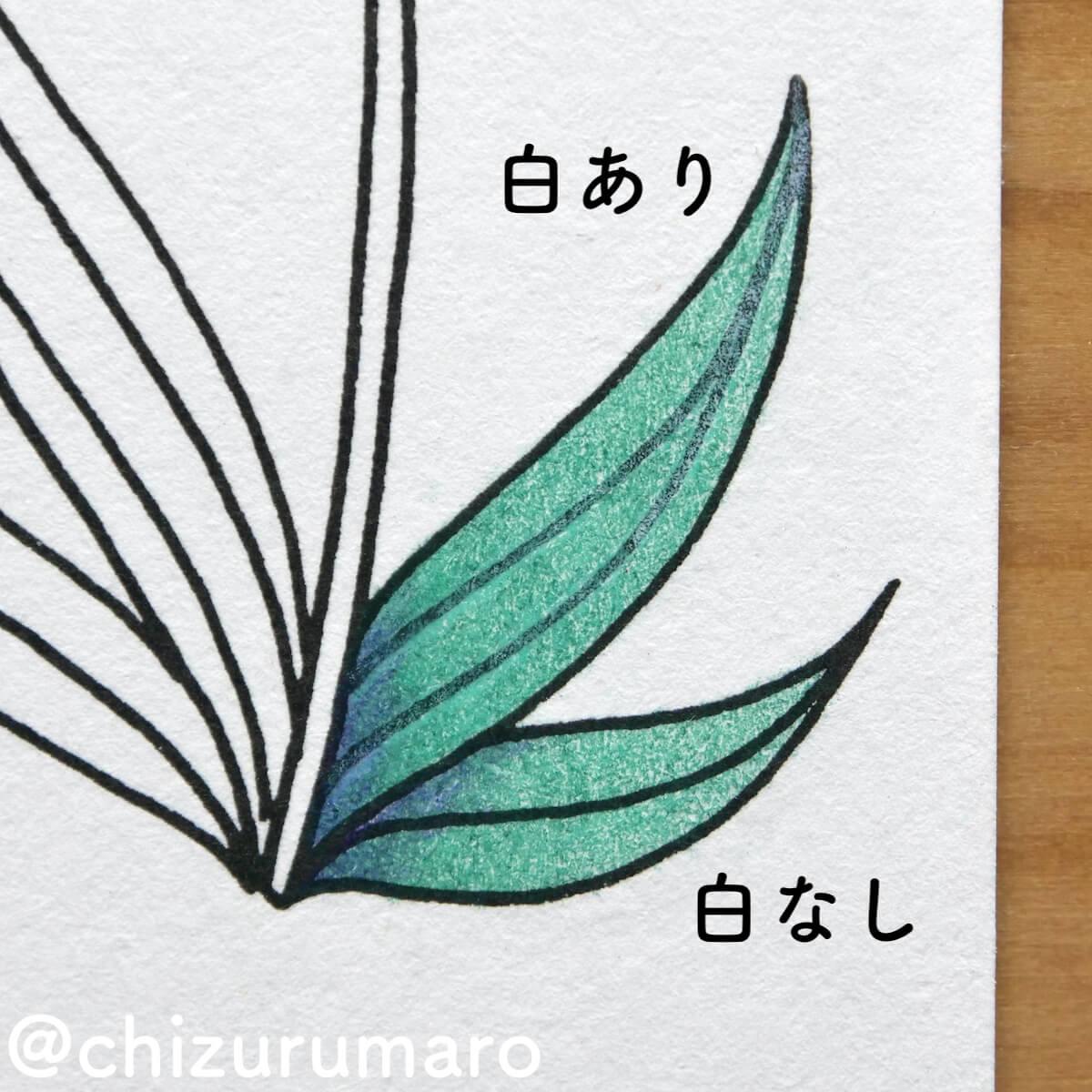 f:id:chizurumaro:20210819124518j:plain