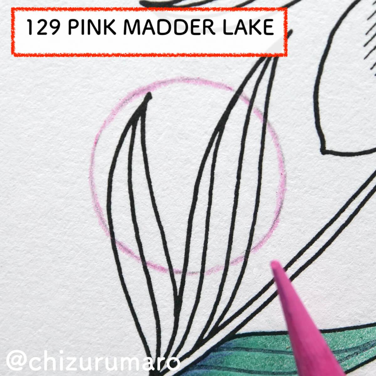 f:id:chizurumaro:20210819125650j:plain