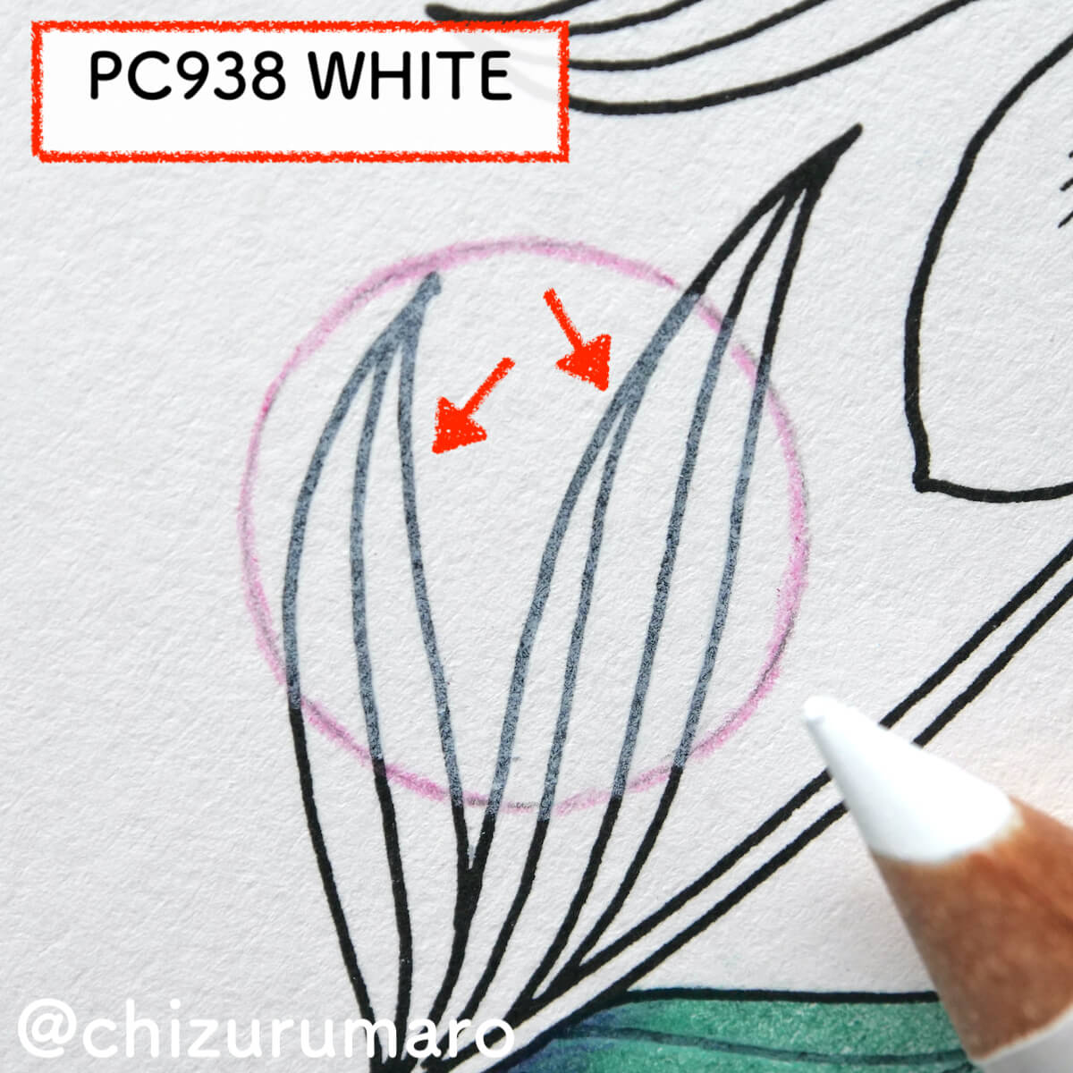 f:id:chizurumaro:20210819125726j:plain