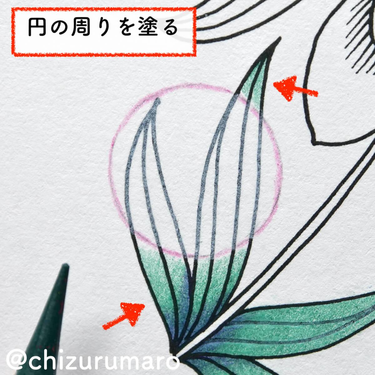 f:id:chizurumaro:20210819125855j:plain