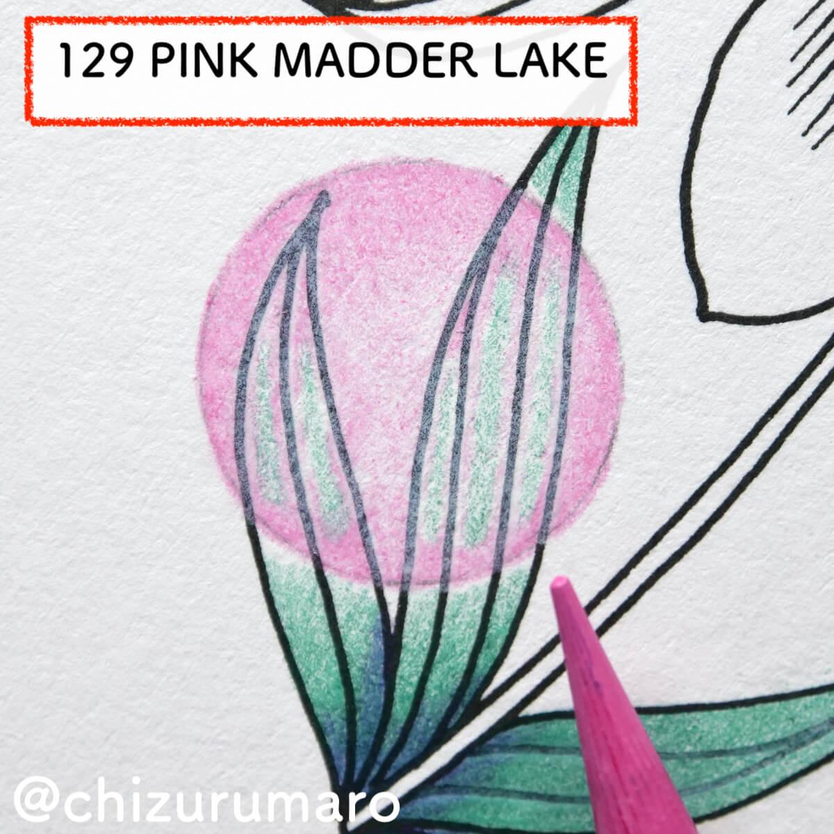 f:id:chizurumaro:20210819130108j:plain