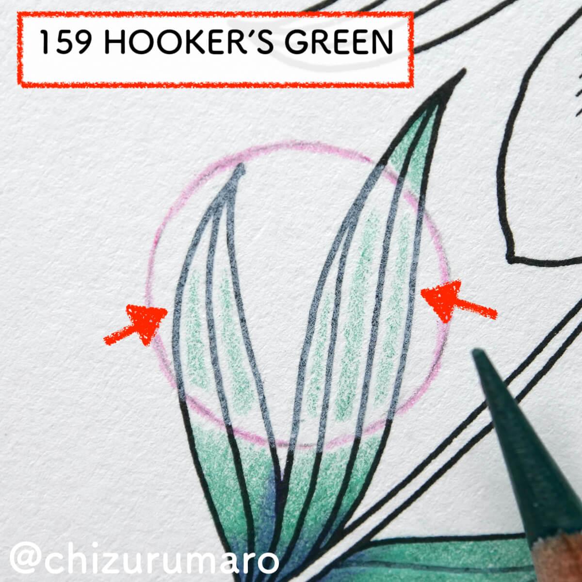 f:id:chizurumaro:20210819130120j:plain