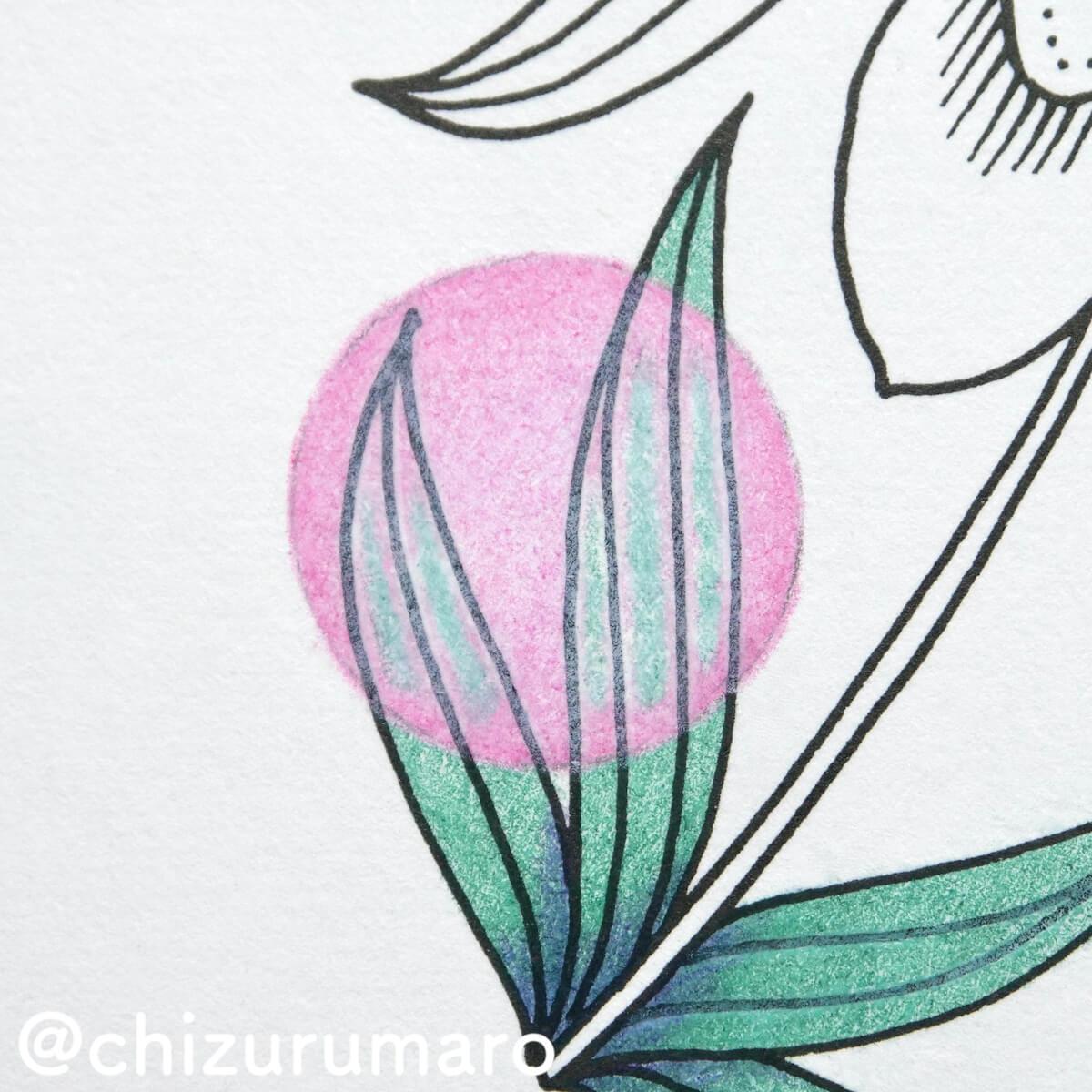 f:id:chizurumaro:20210819130739j:plain