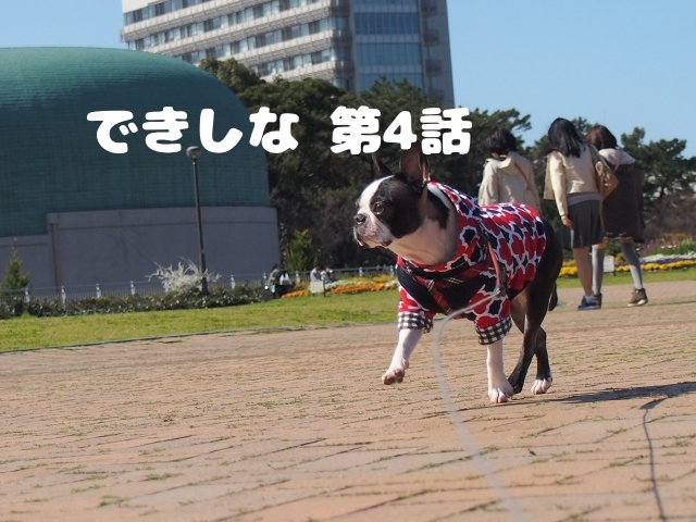 watashi_kekkon_review4