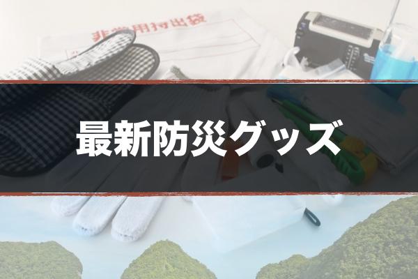 f:id:cho-gouriteki:20160827110717j:plain