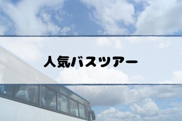 ss-bustour-popular