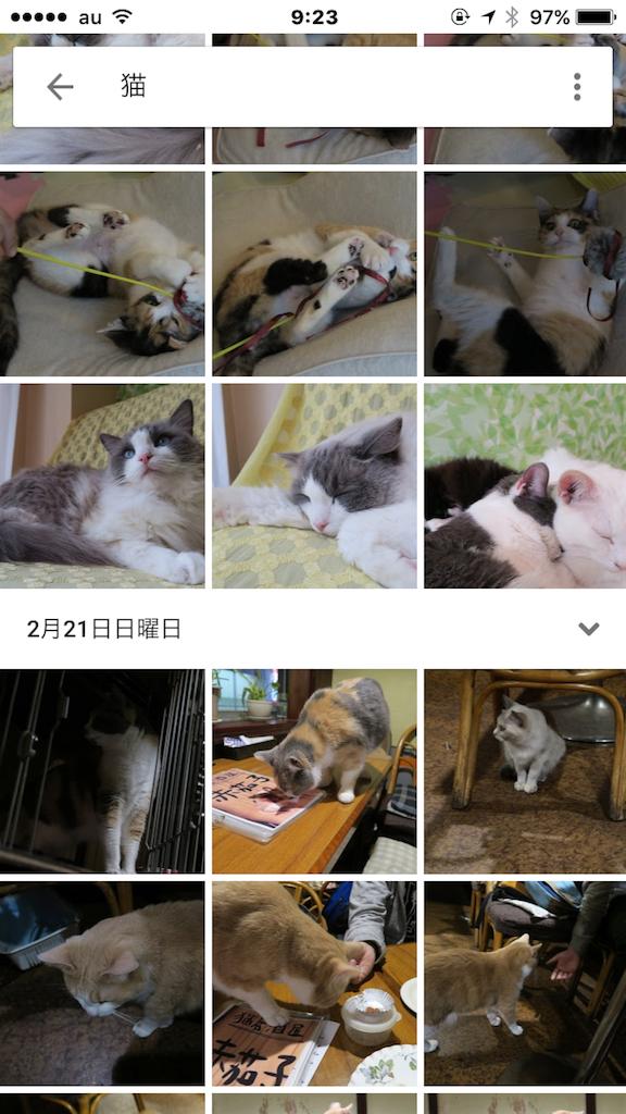 f:id:cho-zu:20160619092341p:image:w300