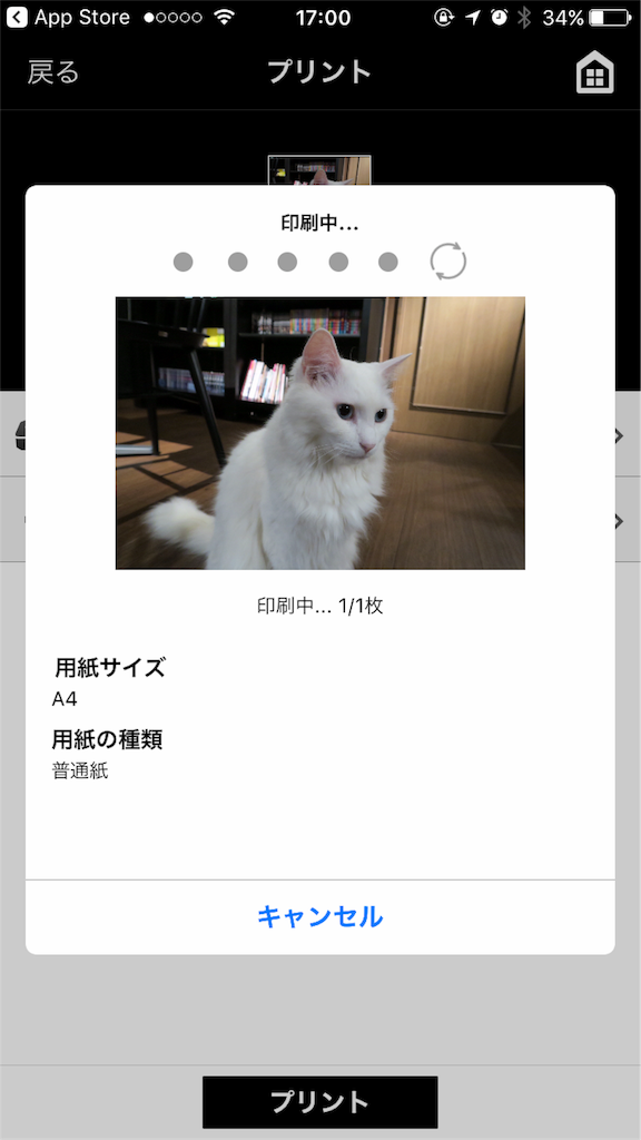 f:id:cho-zu:20170107122820p:image:w400