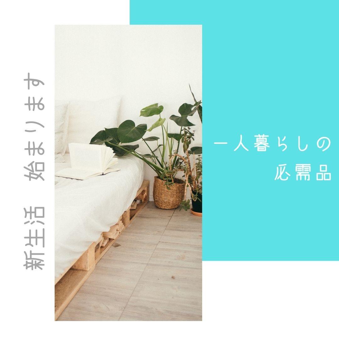 shinseikathu-9
