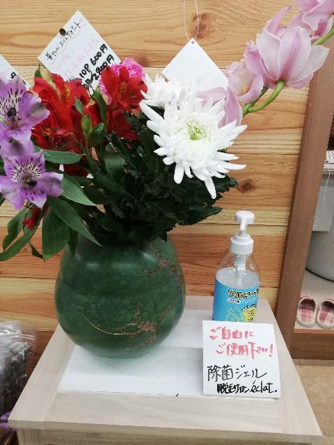 f:id:chobittoyujirou:20201122094705j:image