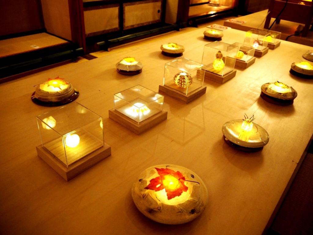 星光の間・川村忠晴さんの展示「草木のあかり」