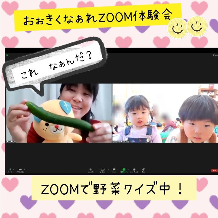 f:id:chochichochi:20210216151241j:plain
