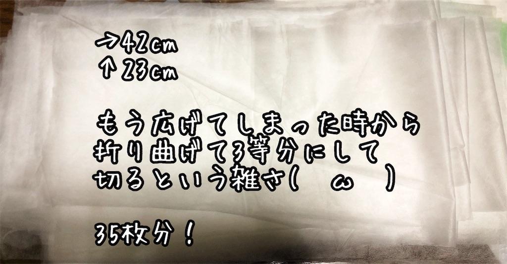 f:id:chochosandayo:20200306233048j:image