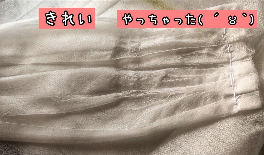 f:id:chochosandayo:20200306234350j:image