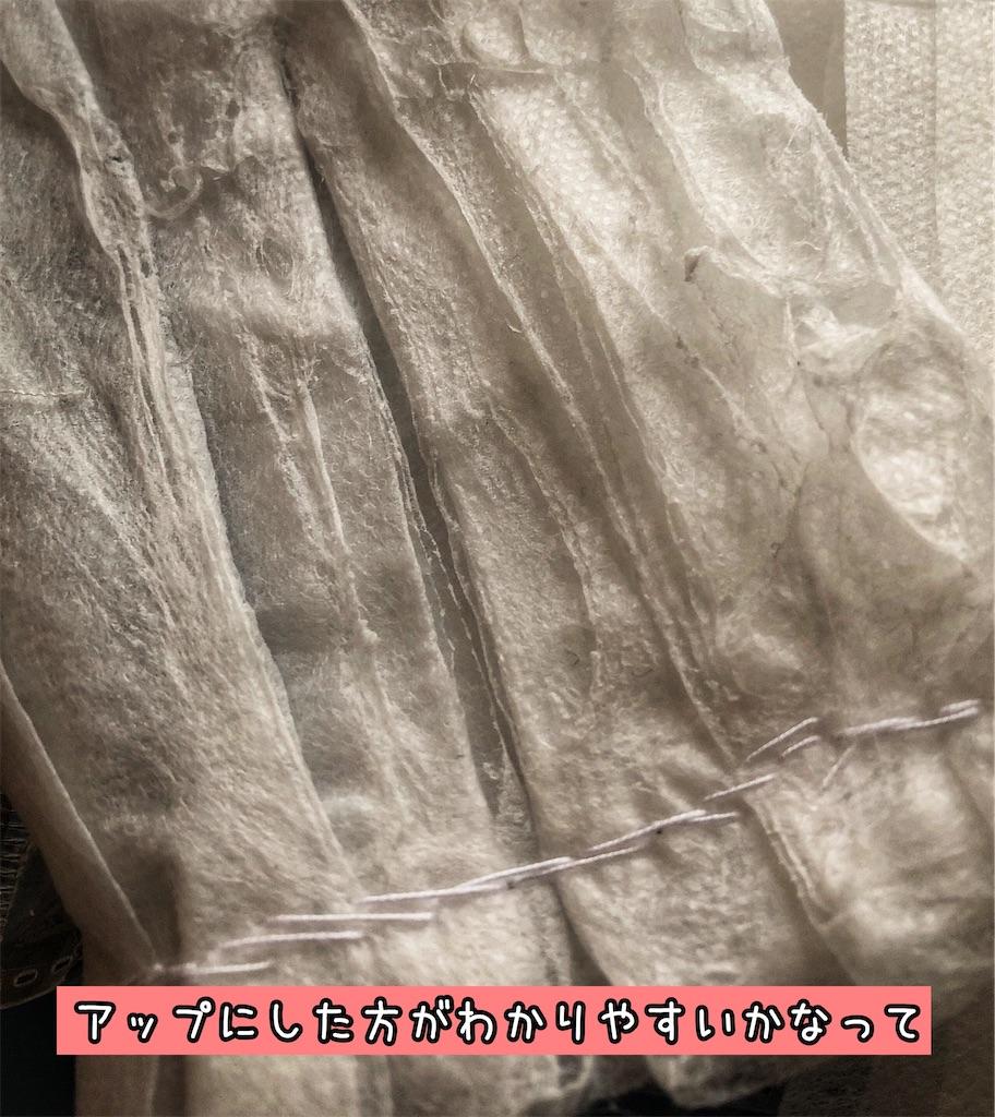 f:id:chochosandayo:20200306234426j:image