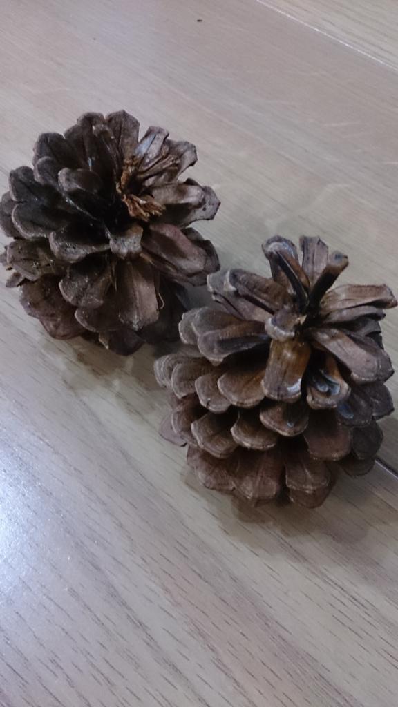 f:id:chocoflowerheart:20170604141618j:plain