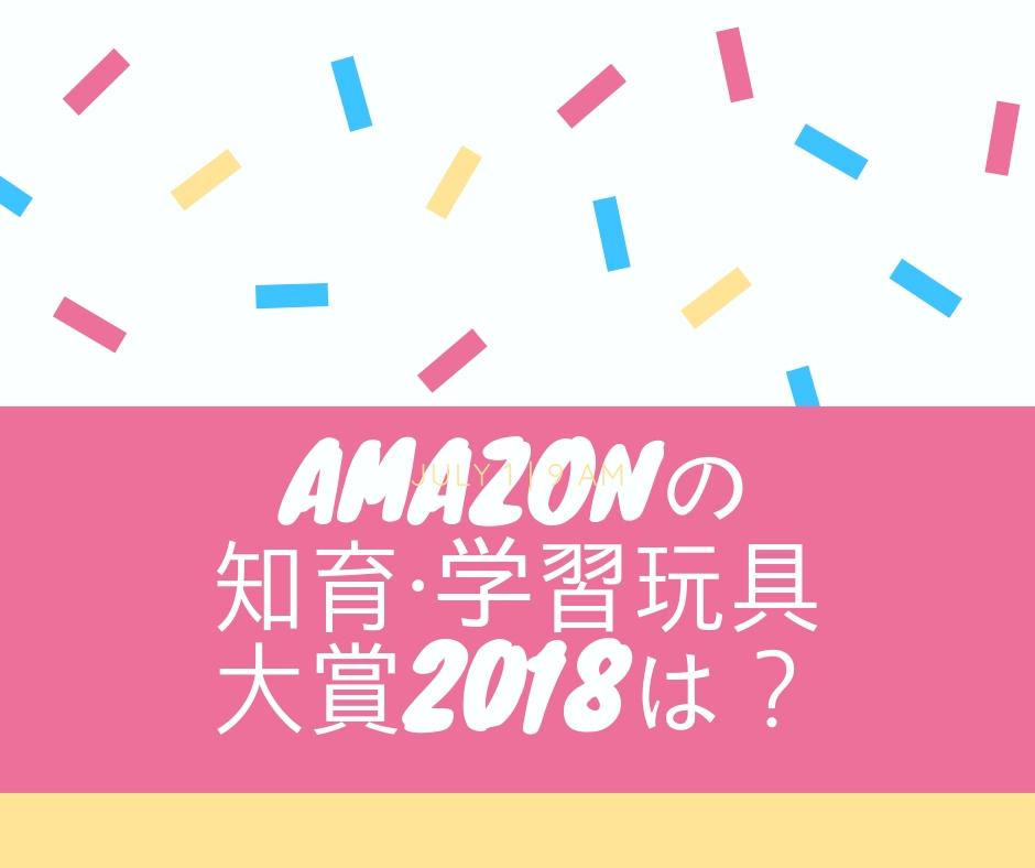 f:id:chocoflowerheart:20181224142400j:plainアマゾン知育玩具