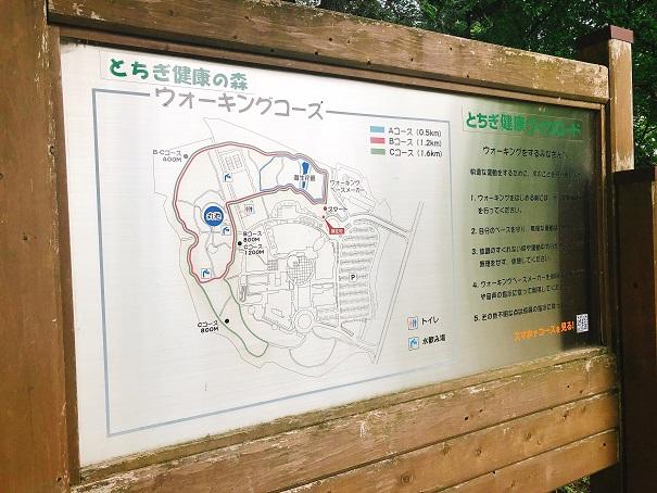 とちぎ健康の森のウォーキングコースの看板