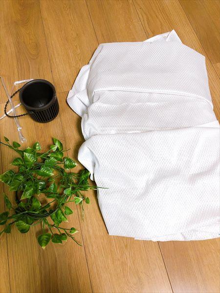 白いカーテンと観葉植物