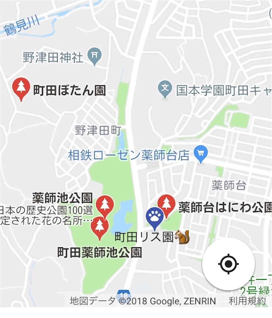 f:id:chocolate_ayaka:20180519073317j:image