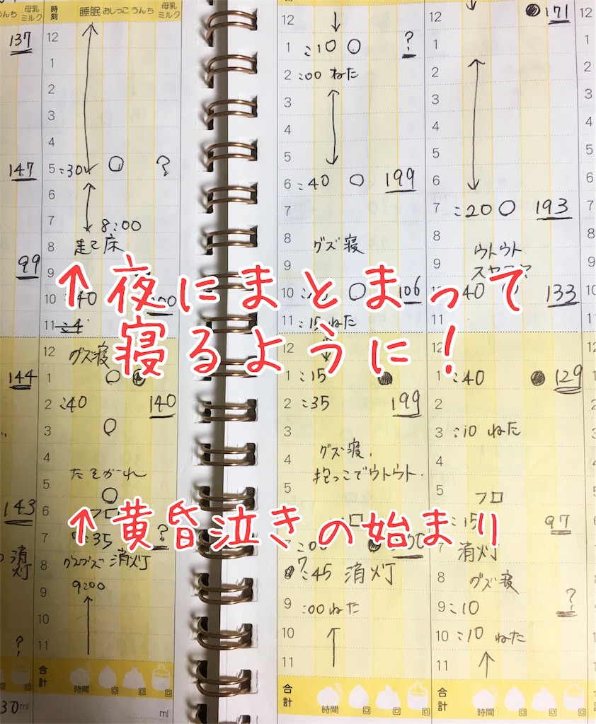 f:id:chocolate_ayaka:20180623171129j:image