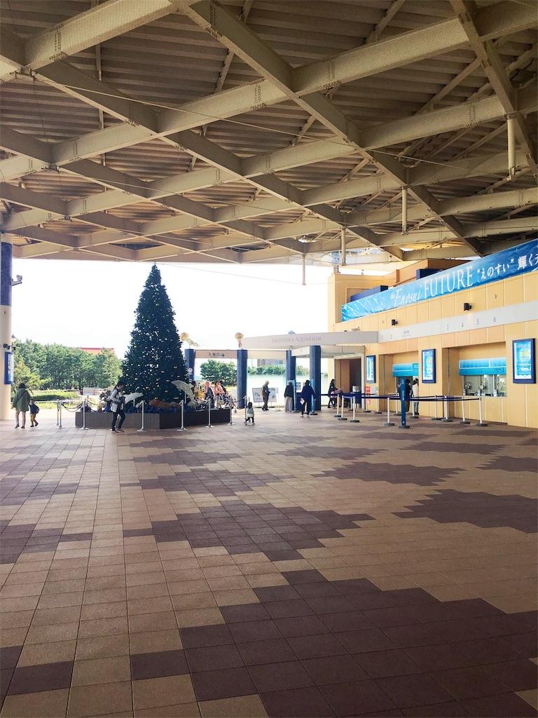 新江ノ島水族館のクリスマスツリー