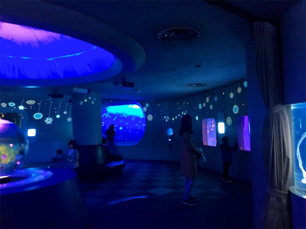 クリスマスのクラゲファンタジーホール