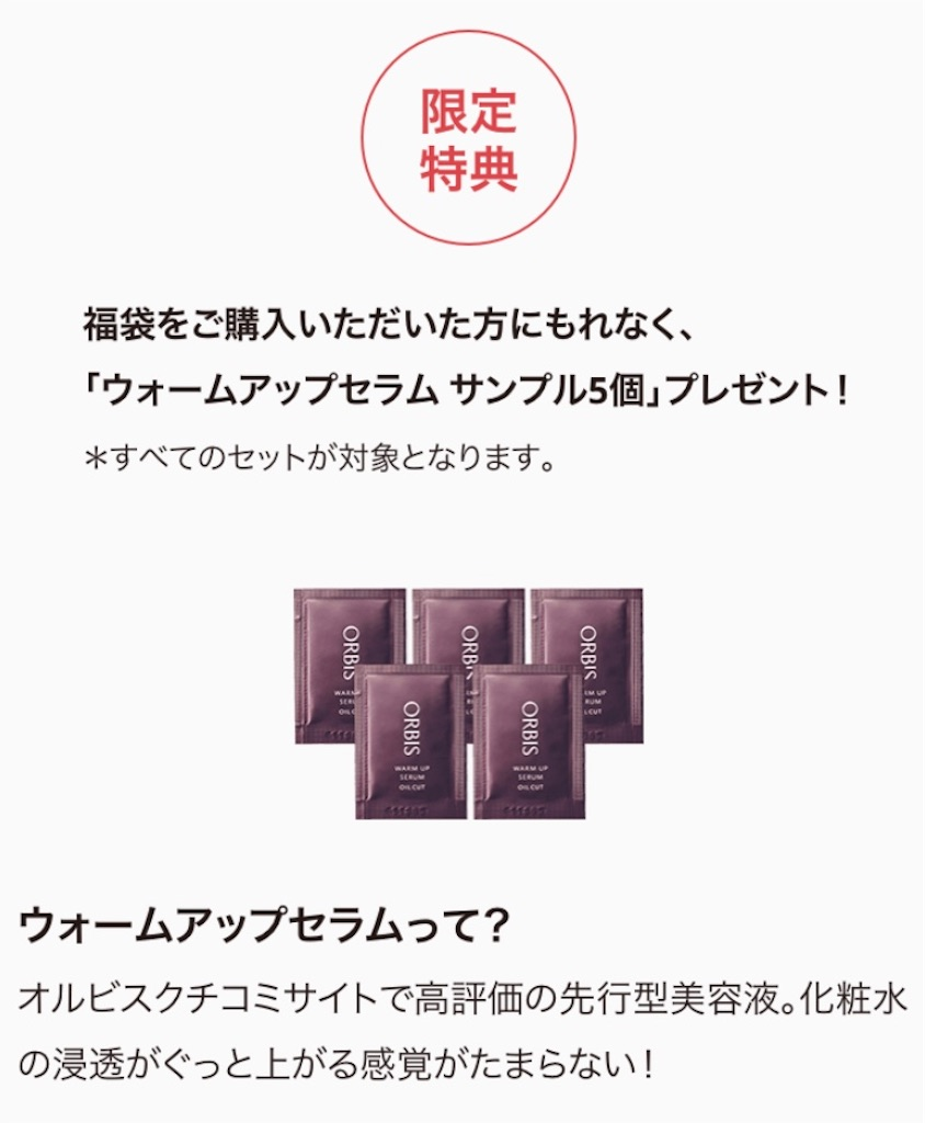 f:id:chocolate_ayaka:20190101005415j:image
