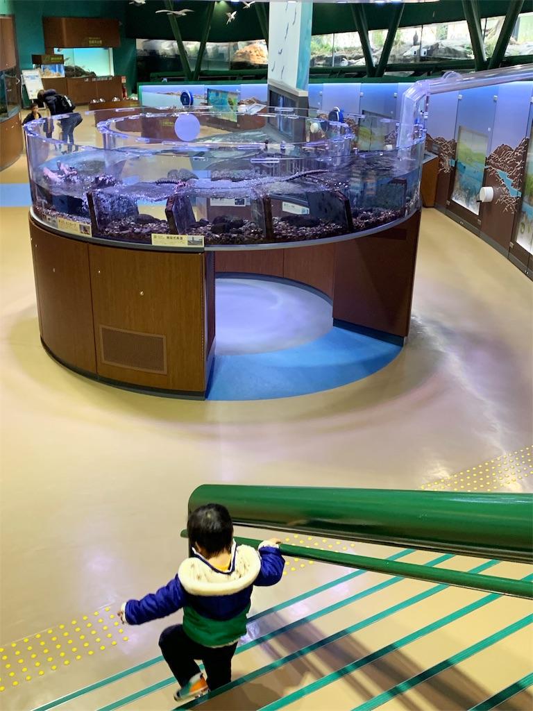 相模川ふれあい科学館 アクアリウムさがみはら 館内