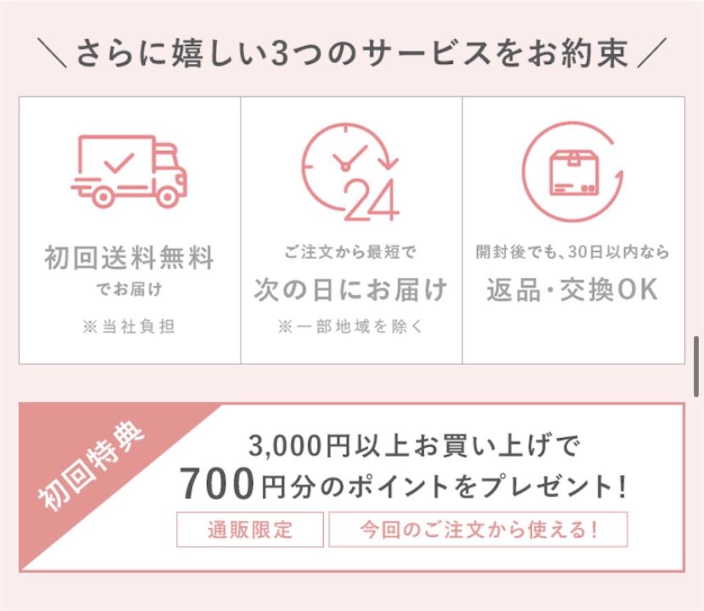 f:id:chocolate_ayaka:20191105225729j:plain