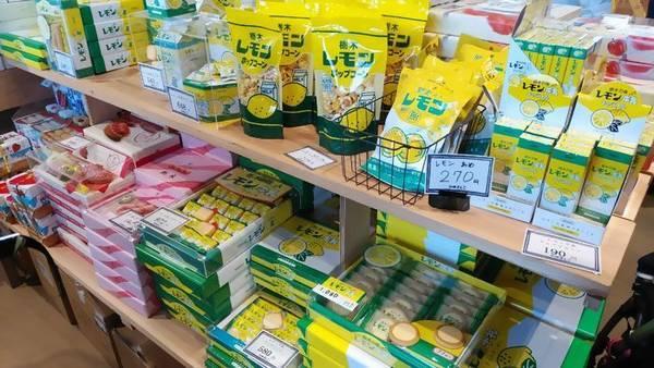 道の駅ましこ 栃木レモン